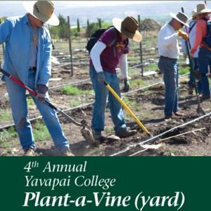 Plant-A-Vine @ Yavapai College | Cottonwood | Arizona | United States